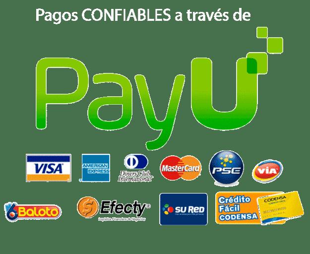 agencia-digital-bogota-pagos